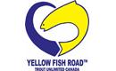 Yellow Fish Road Program